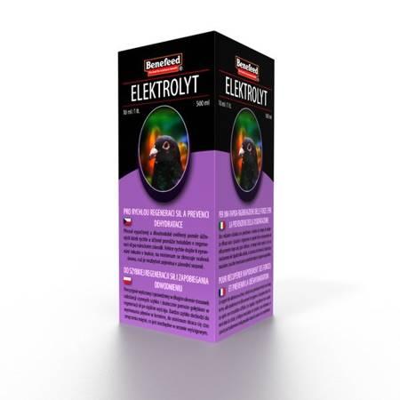 Elektrolyt H 0,5L