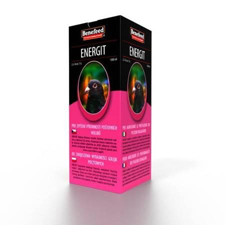 Energit H 1L